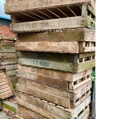 Old wooden crates VIN479D